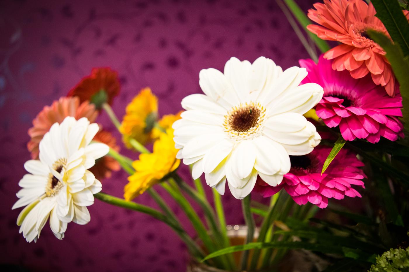 Blumen aus der Region