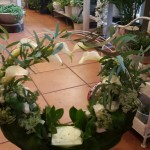 Blumen und Pflanzen für jeden Anlass